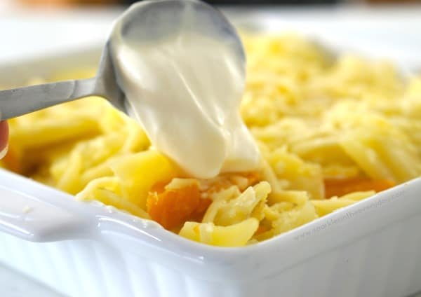 Greek Yoghurt to make Pumpkin and Potato Bake (GF)