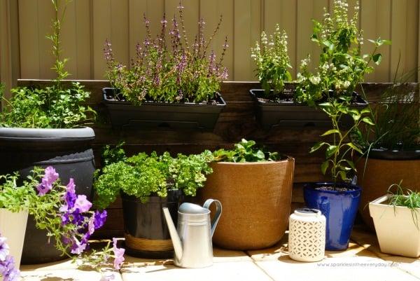 DIY Rustic Herb Garden!