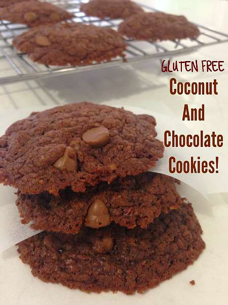 Coconut and Chocolate Cookies 450x
