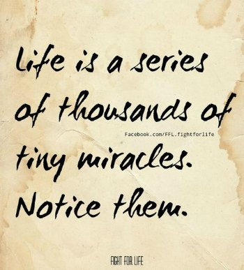Life is a series of tiny miracles!