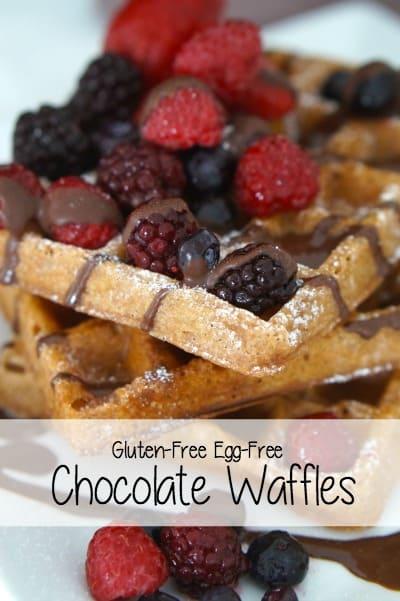 Gluten Free Egg Free Chocolate Waffles