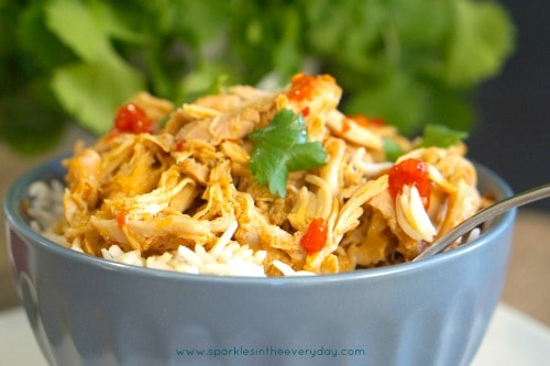 Gluten Free Slow Cooker Asian Shredded Chicken!!