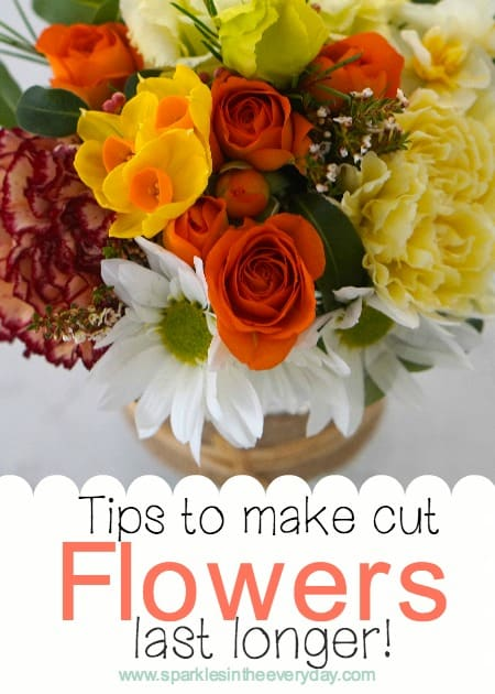 Tips to make cut flowers last longer!