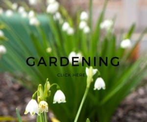 Gardening - Sparkles In The Everyday